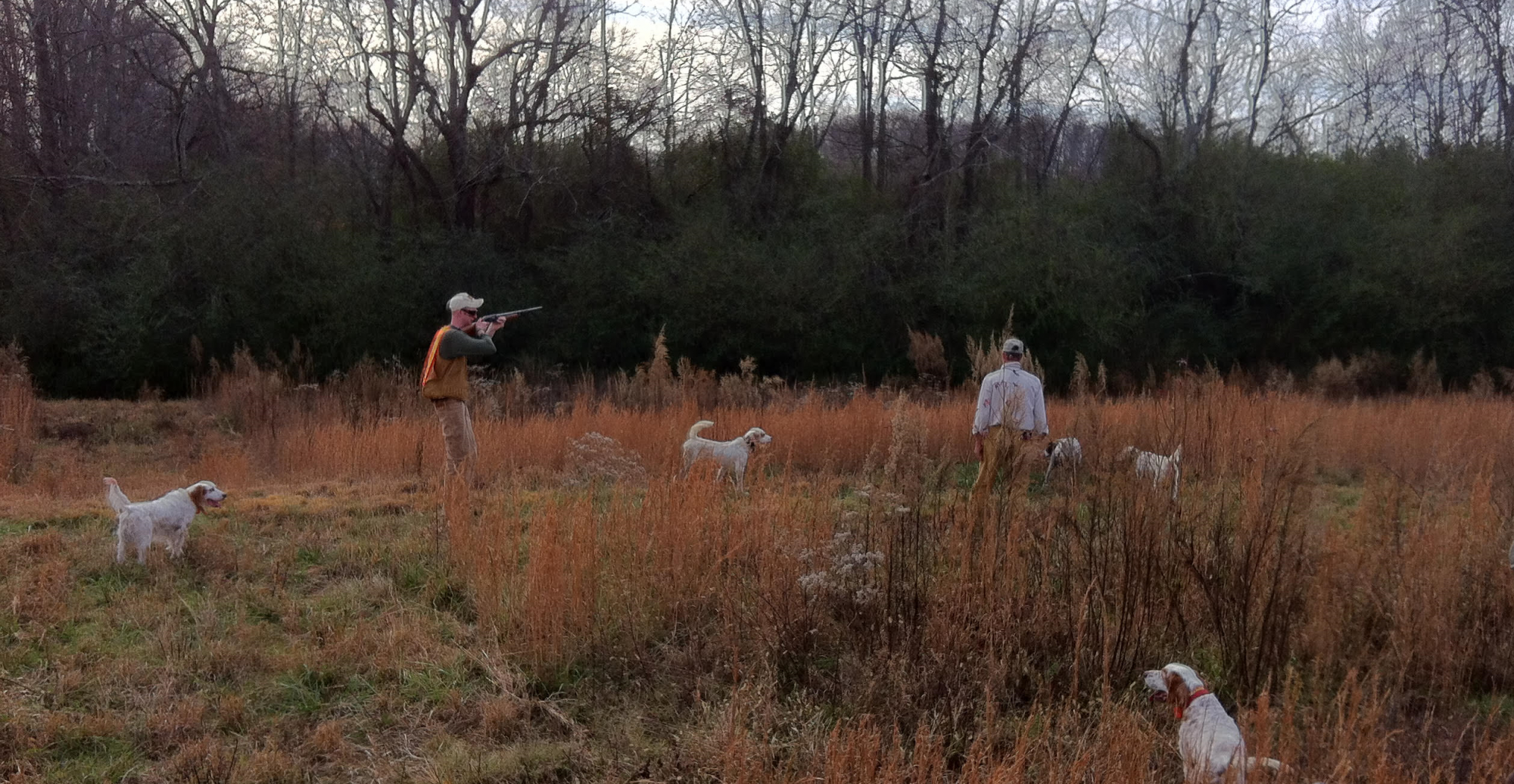 Piney Creek Hunting Preserve – Exceptional wing shooting in